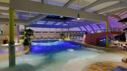 Marvelous Indoor Swimming Pool. Black Forest