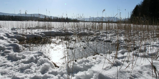 Winteridylle am Kirchsee.