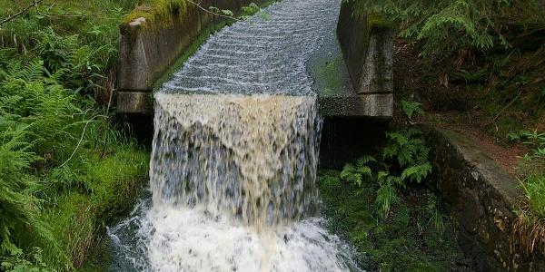 Bald sprudelt das Wasser von der Eisenquelle kräftig und färbt aufgrund des Eisengehaltes die Steine des Bachbettes braun.