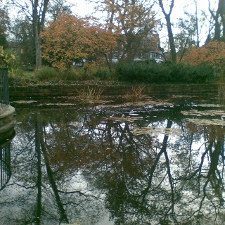 Der Teich am Eingang des Adenauerparks.