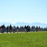 Alpenpanorama bei Wolfegg