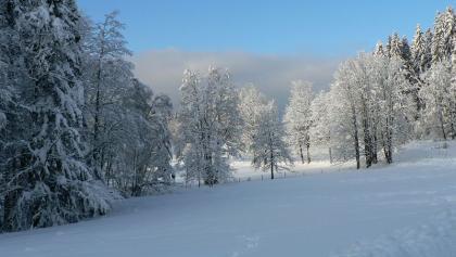 Verschneit liegt rings die ganze Welt.