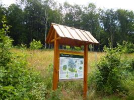 Foto Zwischen den Thementafeln des Naturlehrpfades gibt es Informationen zur Forstwirtschaft