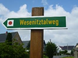Foto Am Wegweiser Wesenitztalweg geht es auf einem Wiesenpfad weiter