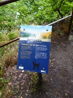 Foto Station des Luchsweges am Aussichtspunkt