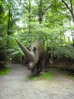 Foto Nashorn-Nachbildung in Sebnitz