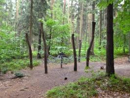 Foto Waldspielplatz mit Kletternetz