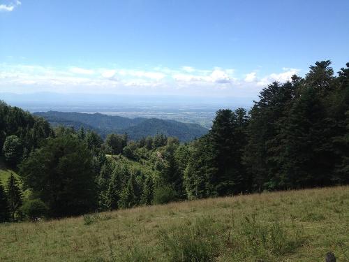 MTB Tour hinauf auf das Kälbelescheuer von Badenweiler aus