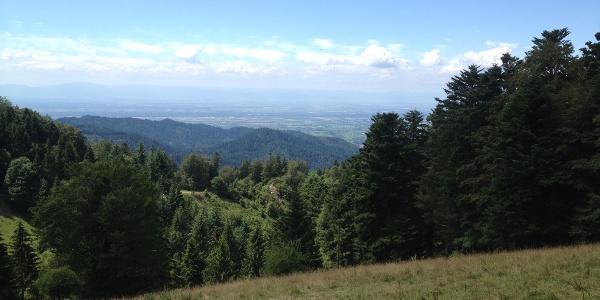 Blick vom Kälbelescheuer in Richtung Vogesen und die Rheinebene