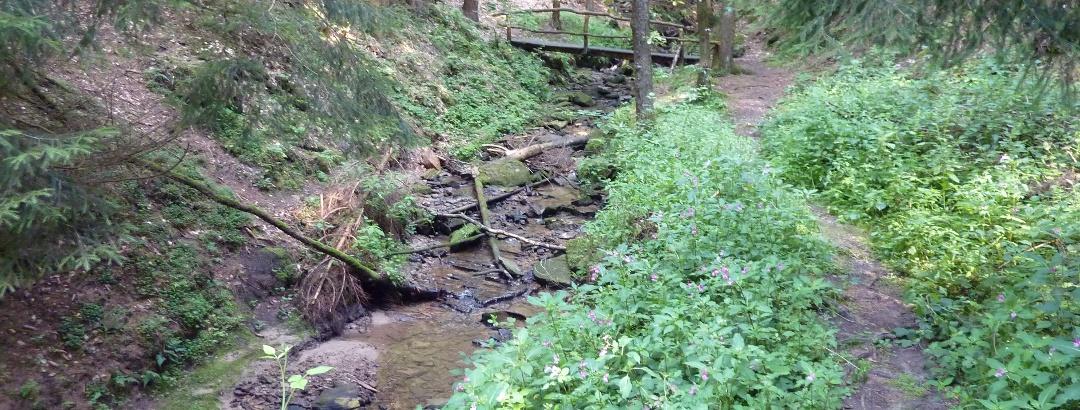 Brücke über den Ickelsbach