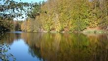 Der Tiergarten von Boitzenburg