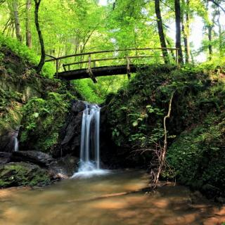 Wasserfall Rauschkümpel
