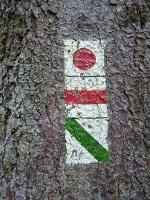 Foto Wir werden von der Wegmarkierung grüner Strich geleitet