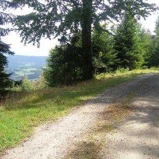 An dem Waldweg nach St. Englmar bieten sich Ausblicke auf die Höhenzüge des Bayerischen Walds.