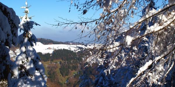 Talabstieg von der Grünburgerhütte 940m