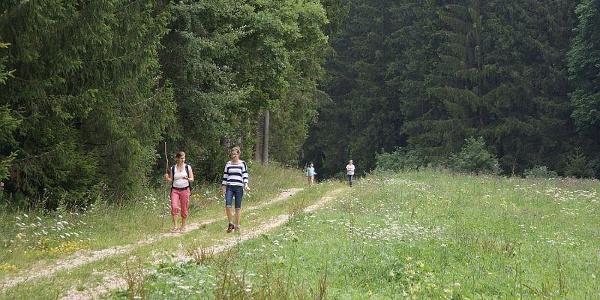 durchs tiefe Tal in Richtung Kloster Neresheim