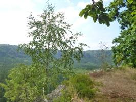 Foto Aussichtsplattform am Kuhstall