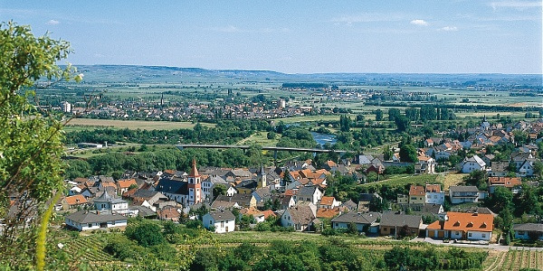 Aussicht auf Münster-Sarmsheim
