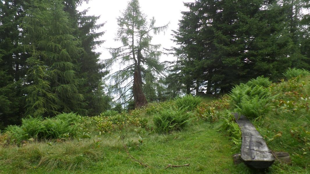 Naturschutzgebiet Tennengebirge