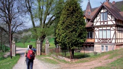 Die Schlossgärtnerei von Schloss Rothestein ist ein reich verzierter Fachwerkbau im neo-gothischen Stil.