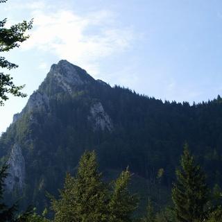 Schöner Blick zum Gipfel bei 890m