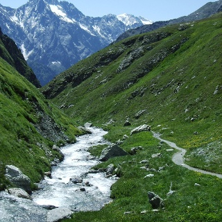 Trail vom Septimerpass ins Tal.