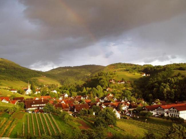 Sasbachwalden - Saschwaller Steig