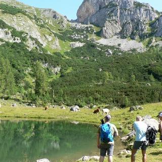 Oberhalb des Sees thront die Rote Wand, der höchste Punkt dieser Tour