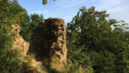 Ruine auf dem Hirschstein