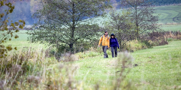 Wandern auf dem Ehmsenweg