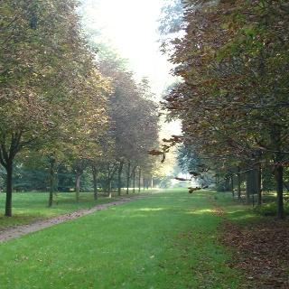 Im Zentrum des barocken Kurparks erinnert ein Gedenkstein aus Granit an seinen Begründer Julius von der Lancken.