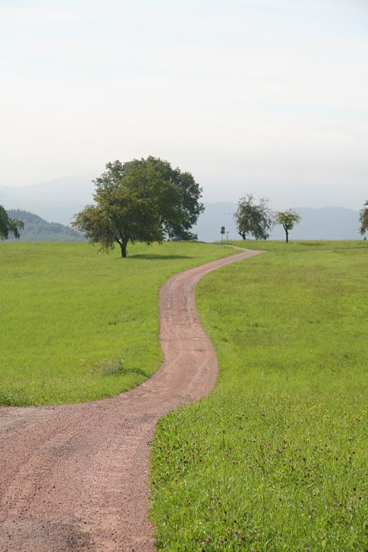 Wehr: Dinkelbergweg I