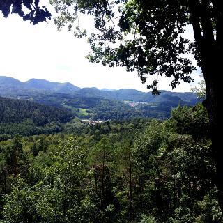 Aussicht auf den Pfälzer Wald