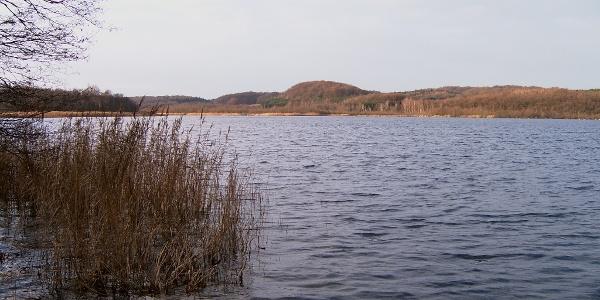 Der Schmachter See war vor wenigen tausend Jahren noch eine schmale Bucht der Ostsee.
