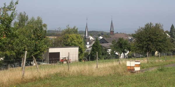 Mountainbiken im Hunsrück: Gornhausen
