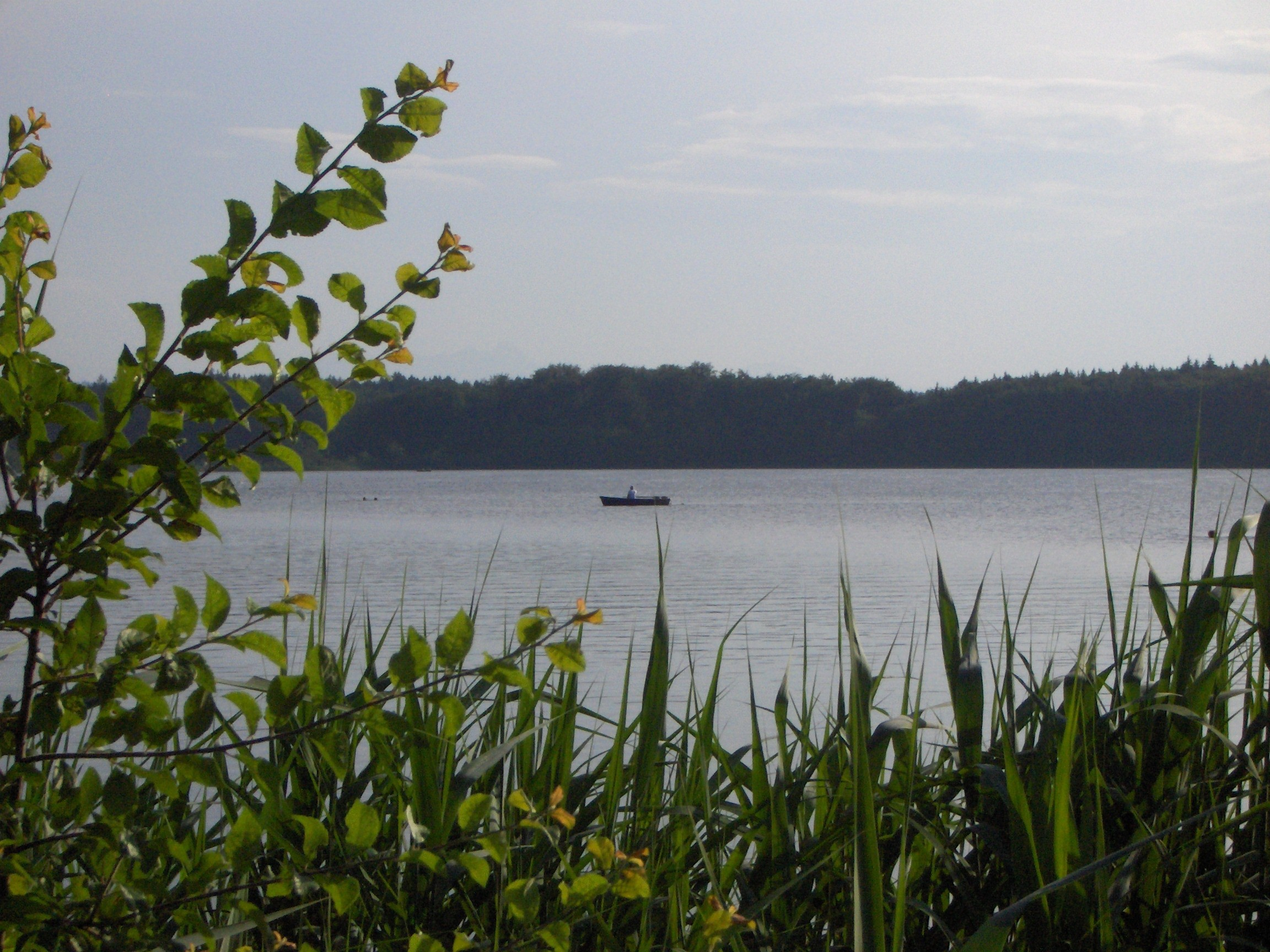 Schöner Seeblick am Hartsee.