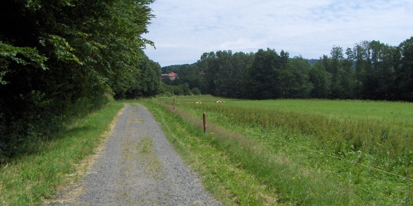 Wir radeln durch das schöne Fuldatal.