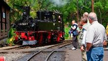 Preßnitztalradweg - Mit der Eisenbahn um die Wette