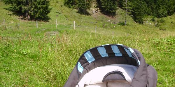An der Oberen Mittel-Alpe