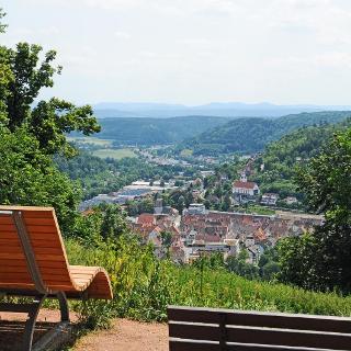 Blick von Bergkapelle auf Oberndorfer Talstadt