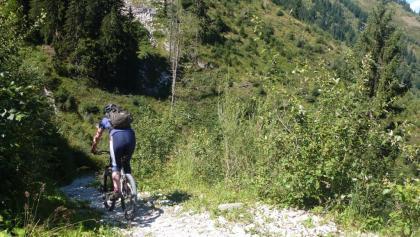 Einfahrt in den Bachler-Trail