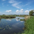 Nationalpark Unteres Odertal.