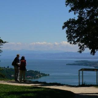 Der Höhengasthof Haldenhof ist bekannt für seine atemberaubende Aussicht über den Bodensee und die Alpenkette.