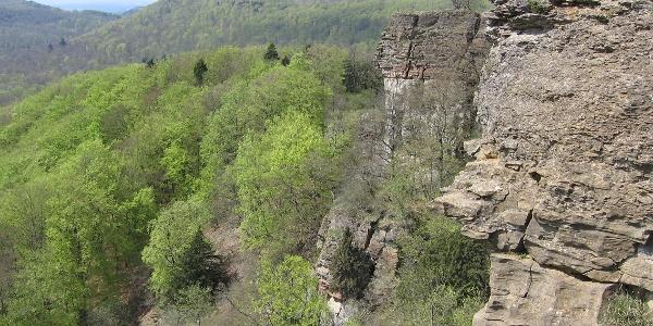Über 40 m ragt die Teufelskanzel am Hohenstein in die Höhe.