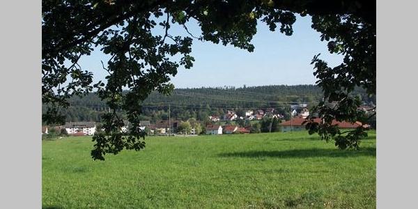 Aus dem Wald heraus werfen wir einen Blick auf Schömberg.