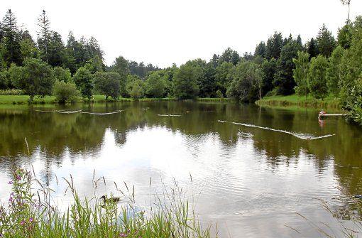 Pfalzgrafenweiler - Den Weiler Wald erleben