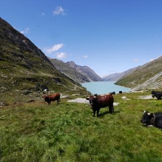 Mattmark Alpe