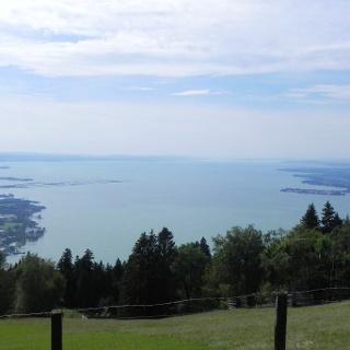 Bodensee Blick vom Pfänder
