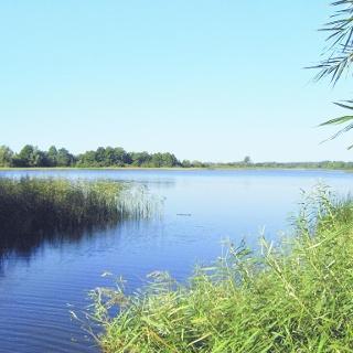 Vom Ufer aus genießen wir einen herrlichen Blick auf den Pütter See.