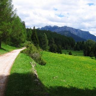 Daiano - Spazierweg zwischen den Bauernhöfen der Hochebene Ganzaie